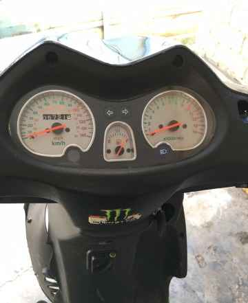150 Ирбис RZR